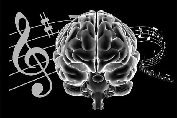 music brain cognition